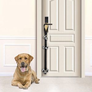 Dogs can ring using this device to let you know they want to go to the bathroom.