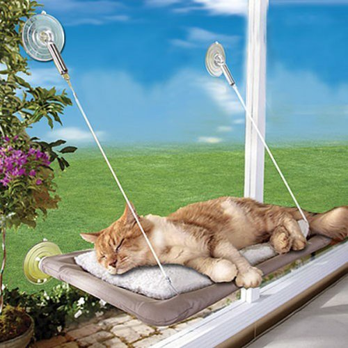 sun cat bed suction cup window